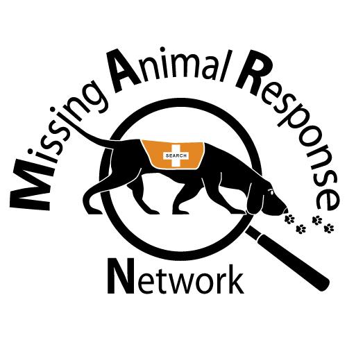 lost cat behavior missing animal response network